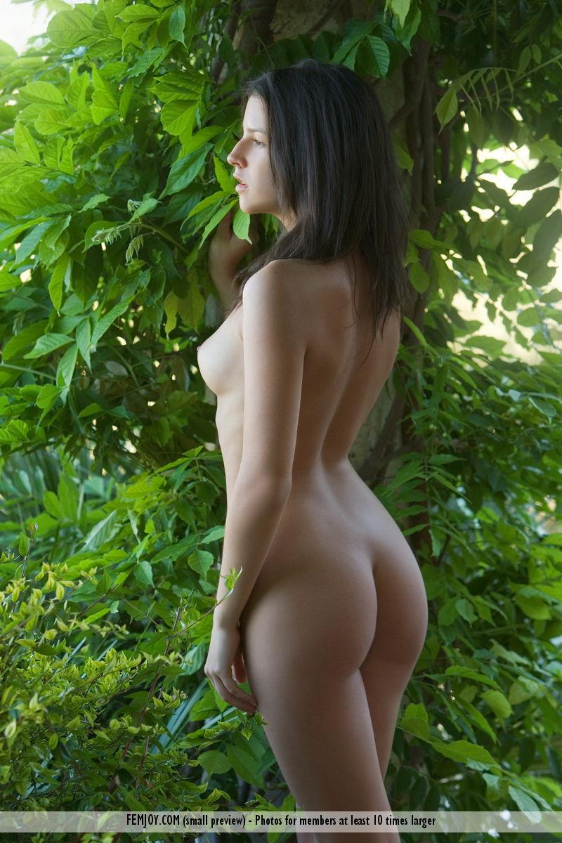 Free naked eva